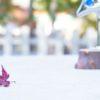 蛇口百景@京都吉田神社